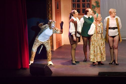 Broxbourne Theatre Puss in Boots